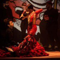 27 Flamenco-19