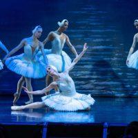 Ballet-San-Petersburgo-Lalo-Deho070