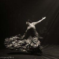 amores-flamencos02