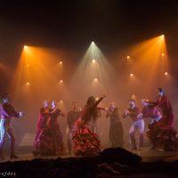 amores-flamencos16