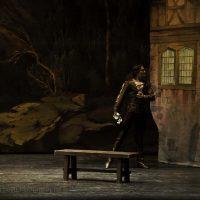 ballet-san-petersburgo-lago_02