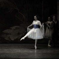 ballet-san-petersburgo-lago_11
