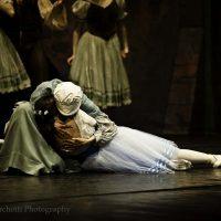 ballet-san-petersburgo-lago_20