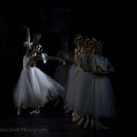 ballet-san-petersburgo-lago_34