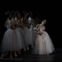 ballet-san-petersburgo-lago_37