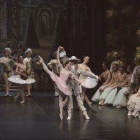 bella-durmiente-ballet-san-petersburgo04