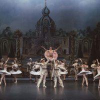 bella-durmiente-ballet-san-petersburgo07