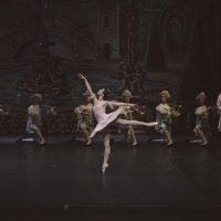 bella-durmiente-ballet-san-petersburgo11