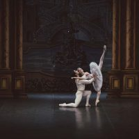 bella-durmiente-ballet-san-petersburgo12