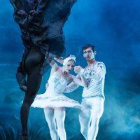 Ballet San Petersburgo. El Lago de los Cisnes. Ekaterina Bortiakova.