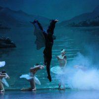 bsp-lago-cisnes_03