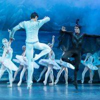 Ballet San Petersburgo. El Lago de los Cisnes.