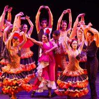 carmen-ballet-flamenco-12