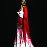 carmen-ballet-flamenco-19