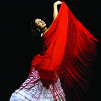 carmen-ballet-flamenco-20