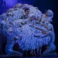 el-lago-de-los-cisnes-kiev-modern-ballet_03