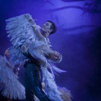 el-lago-de-los-cisnes-kiev-modern-ballet_04