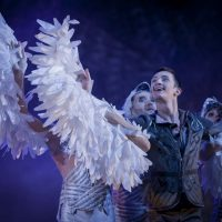 el-lago-de-los-cisnes-kiev-modern-ballet_05