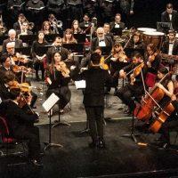 la-decision-orquesta-cruz-diez-01