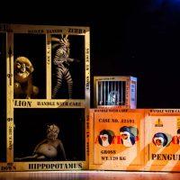 Bergamo, Madagascar il musical. Produzione MAS. Photo Copyright © Cristian Castelnuovo CFC