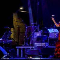 pilar-boyero-en-concierto-07