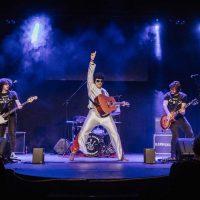 rock-suena-en-familia30