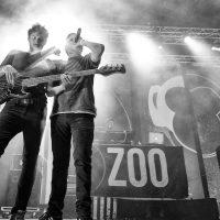 zoo-en-concierto-08